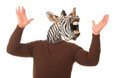 Funny Zebra Man Concept. Laughing zebra face on a man's body with hands outstretched Stock Images