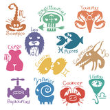 Funny zodiac signs Stock Images