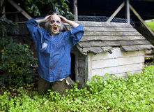 Funny zombie in front of a doghouse Royalty Free Stock Image
