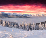 Funtastic winter morning in mountains Stock Photo
