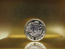 1 funtowa moneta, Zjednoczone Królestwo nad złotem Zdjęcia Royalty Free