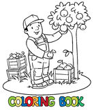 Funy farmer or gardener with apples. Coloring book Stock Photo