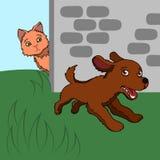 Funzionamenti del cucciolo Immagini Stock Libere da Diritti