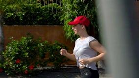 Funzionamenti della donna giù la via fra le palme Stile di vita attivo sano video d archivio