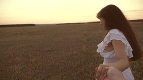 Funzionamenti della ragazza attraverso il campo che tiene la mano del suoi uomo e risate cari Movimento lento felice nei funziona stock footage