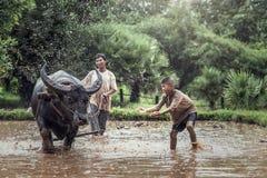 Funzionamento asiatico del figlio e dell'agricoltore Fotografie Stock Libere da Diritti