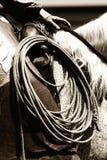 Funzionamento autentico del cowboy (seppia) immagini stock