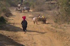 Funzionamento birmano della donna, lago Inle, Birmania fotografia stock