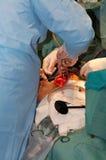 Funzionamento chirurgico su cuore Immagine Stock