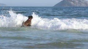 Funzionamento del cane in spiaggia di sabbia archivi video