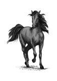 Funzionamento del cavallo di corsa sullo schizzo di vettore delle corse illustrazione di stock