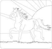 funzionamento del cavallo di declino Fotografie Stock Libere da Diritti