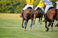 Funzionamento del cavallo nel gioco di polo Fotografia Stock Libera da Diritti