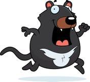 Funzionamento del diavolo tasmaniano del fumetto Immagini Stock Libere da Diritti