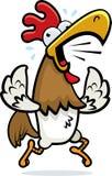 Funzionamento del gallo Fotografia Stock