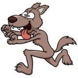 Funzionamento del lupo Immagini Stock