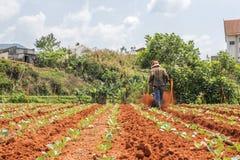 Funzionamento dell'agricoltore Immagini Stock