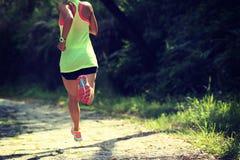Funzionamento dell'atleta del corridore sulla traccia della foresta Fotografia Stock Libera da Diritti