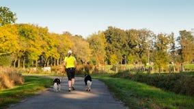 Funzionamento della donna con due cani sulla strada campestre Fotografie Stock
