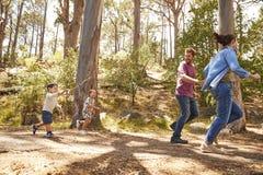 Funzionamento della famiglia lungo il percorso attraverso Forest Together Fotografie Stock