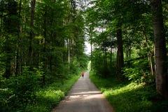 Funzionamento della giovane donna lungo il percorso attraverso la foresta verde Immagini Stock
