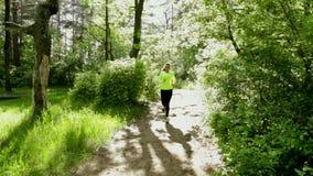 Funzionamento della ragazza di sport sul sentiero nel bosco in parco Giorno pieno di sole Fermi poi hanno resto video d archivio