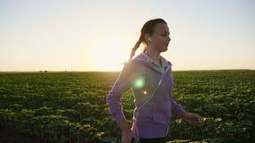 Funzionamento della ragazza lungo il campo al tramonto archivi video