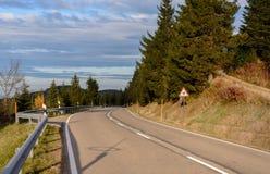 Funzionamento della strada asfaltata lungo il pendio invaso con la foresta di conifere Fotografia Stock Libera da Diritti