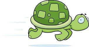 Funzionamento della tartaruga Fotografia Stock