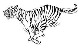 Funzionamento della tigre Fotografie Stock
