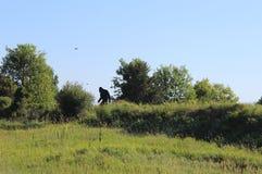 Funzionamento di Bigfoot a partire dalla macchina fotografica immagini stock libere da diritti