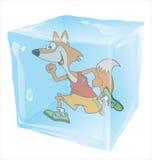 Funzionamento di Fox congelato in cubetto di ghiaccio Fotografie Stock Libere da Diritti