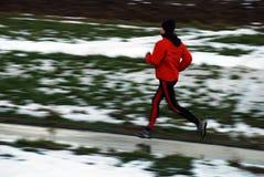 Funzionamento di inverno immagini stock libere da diritti