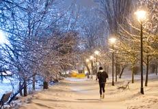 Funzionamento di notte nel parco nevoso immagini stock libere da diritti