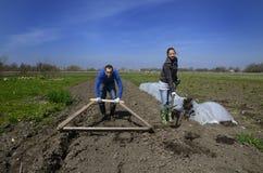 Funzionamento duro della donna e del giovane nell'azienda agricola lettone Fotografie Stock Libere da Diritti