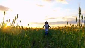 Funzionamento felice del bambino e della madre dopo a vicenda lungo il giacimento di grano contro lo sfondo di un declino al rall video d archivio