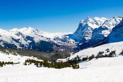 Funzione alpina dello sci in alpi svizzere Immagini Stock