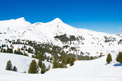 Funzione alpina dello sci in alpi svizzere Fotografia Stock