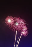 Fuochi d'artificio Immagini Stock