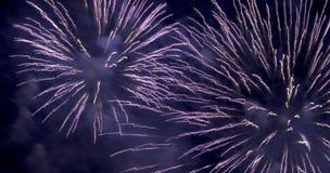 Fuochi d'artificio (2596) Fotografie Stock Libere da Diritti