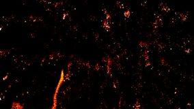 Fuochi d'artificio video d archivio