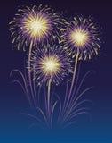 Fuochi d'artificio. Immagini Stock