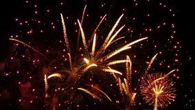 Fuochi d'artificio 12 video d archivio