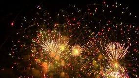 Fuochi d'artificio 5 stock footage