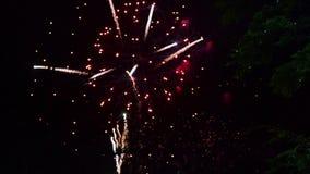 Fuochi d'artificio stock footage