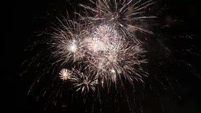 Fuochi d'artificio archivi video