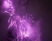 2017 fuochi d'artificio Fotografie Stock