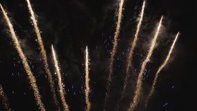 Fuochi d'artificio alla notte stock footage