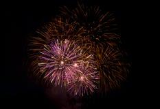 Fuochi d'artificio alla notte Fotografie Stock Libere da Diritti