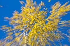 Fuochi d'artificio autunnali Fotografie Stock